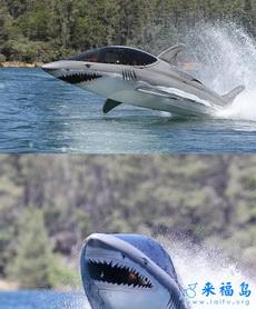开着我的鲨鱼战舰去征服海洋