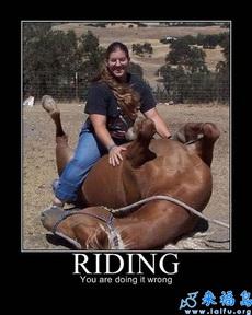 马不是这么骑的!可恶!