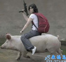 girl riding a pig