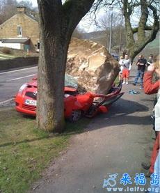 车主悲催了,可是这石头哪来的