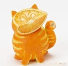 cute orange cat.