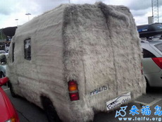 这辆车冬天不开暖气也会很暖和的吧