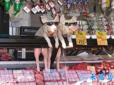 尼玛这样卖猪肉也太喜感了