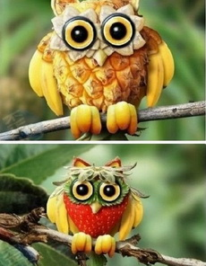 水果猫头鹰