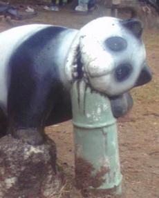 在公园看到一只熊猫,吓死我了