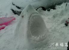 堆个鲨鱼雪人