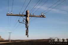 悬空电线杆