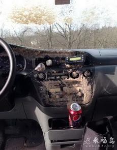 车里遇到这事,到哪里说理去啊