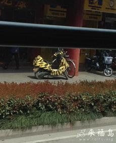 还以为是豹纹汽车,仔细一看是黄色胶带
