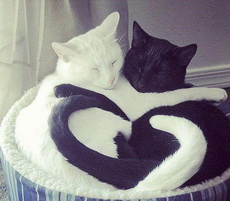 满满的都是爱啊!