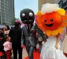 植物僵尸恋爱结婚了
