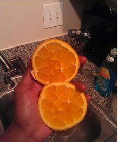 一个励志要长成石榴的橙子