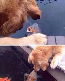 嗨,来亲一个吧!