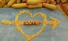 搓玉米搓出来的爱情