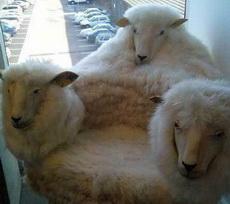 土豪家的三羊开泰沙发
