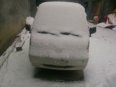 刚刚下完雪,就看到了这鄙视的小眼神