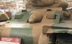 这是个公的坦克!