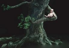 孩子,回到大自然的怀抱去吧