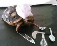 這個廚師動作有點慢??!