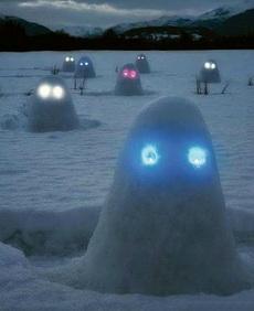 雪地里的孤魂