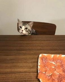 你好意思自己吃么