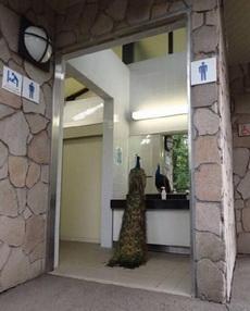 突然尿急去个卫生间看到沈王爷在照镜子