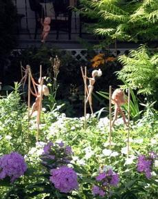 邻居家的花园,不明白他是什么用意