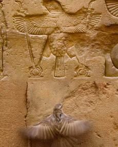 那個是幾千年前的我