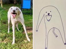 原来画狗这么简单,大家也可以学习下