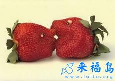 利用素菜水果的搞笑创意7