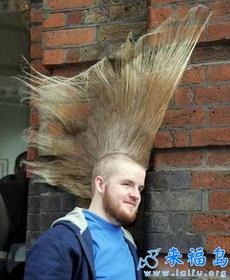 疯狂的发型