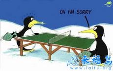 尴尬的企鹅