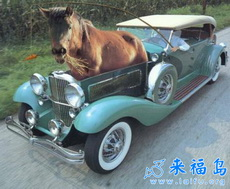 Newly Invented Green Car