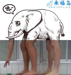 浴室里的大象