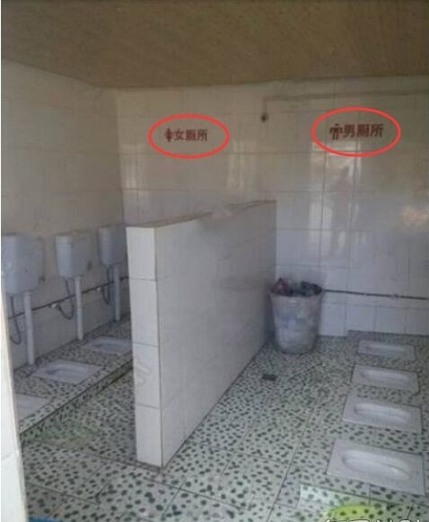 有了这个厕所,上厕所的次数多了好几倍[奇闻怪事]