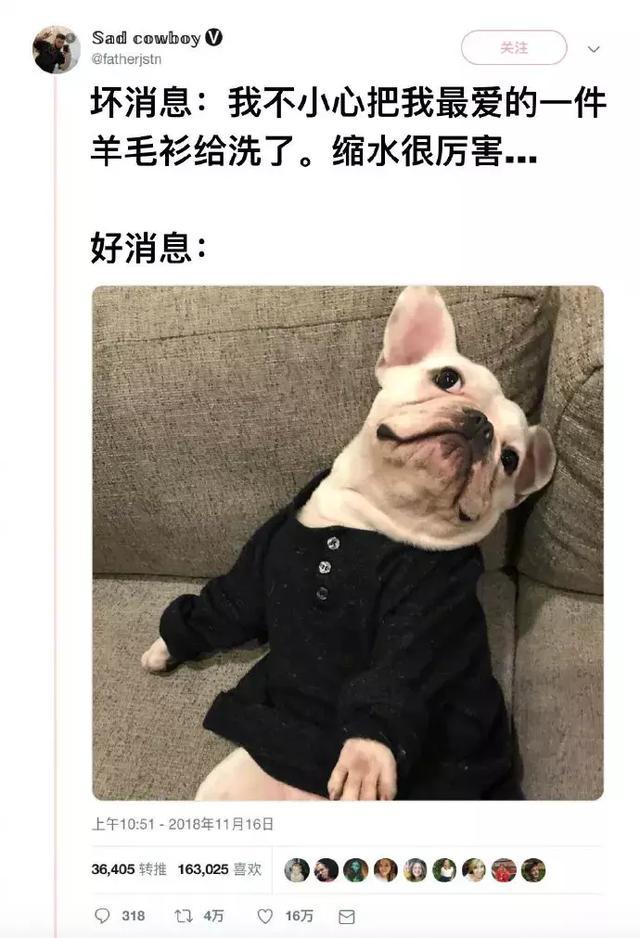 没事狗子平时买件衣服比给你自己买还贵