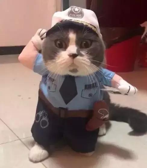 这个警察有点凶