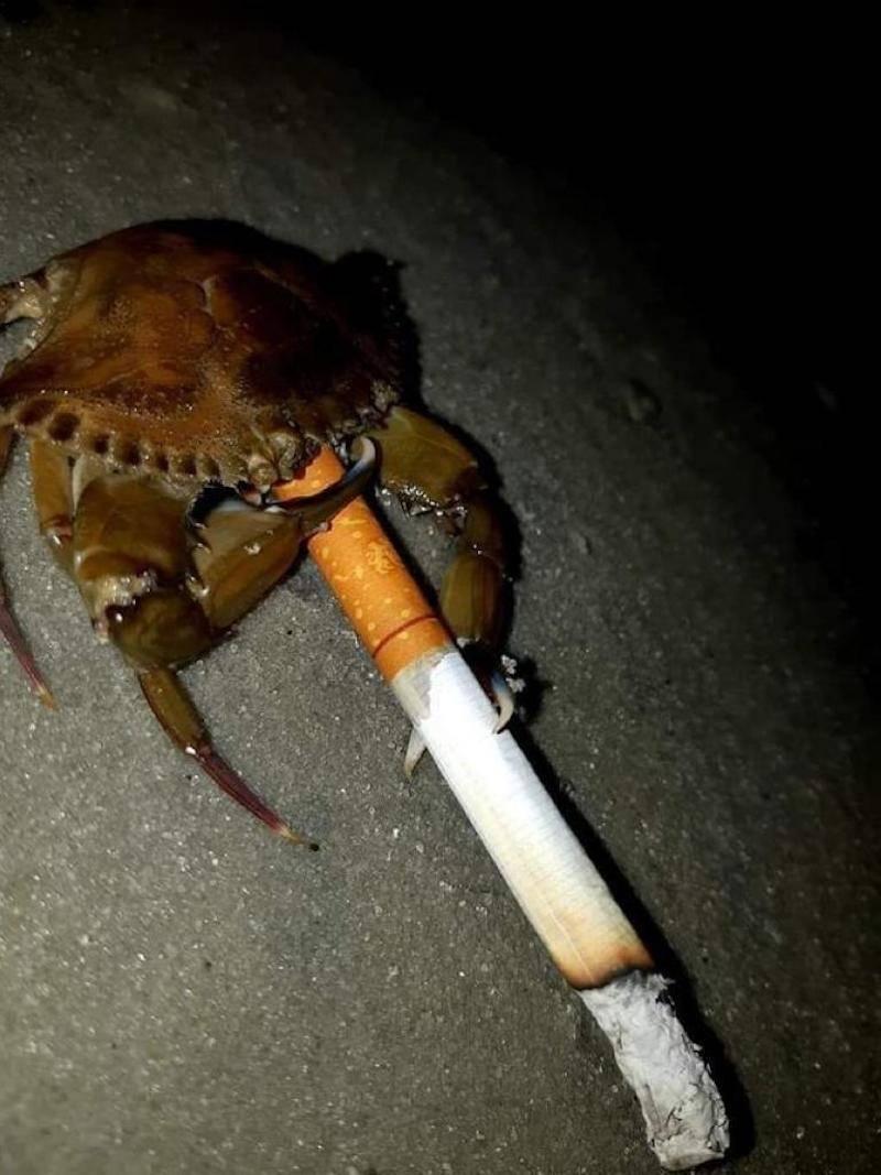 最近烟瘾又大了